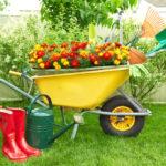 Все для сада и огорода